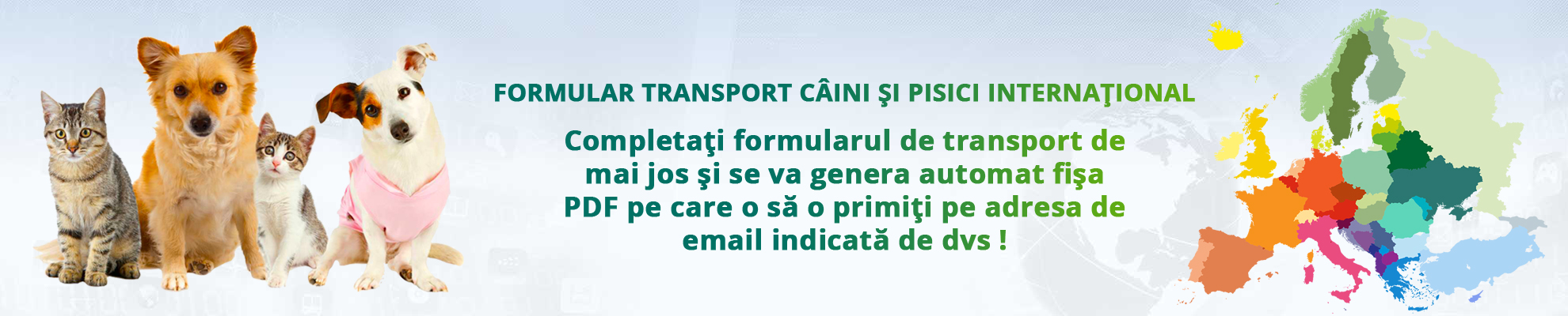 Formular transport caini si pisici international