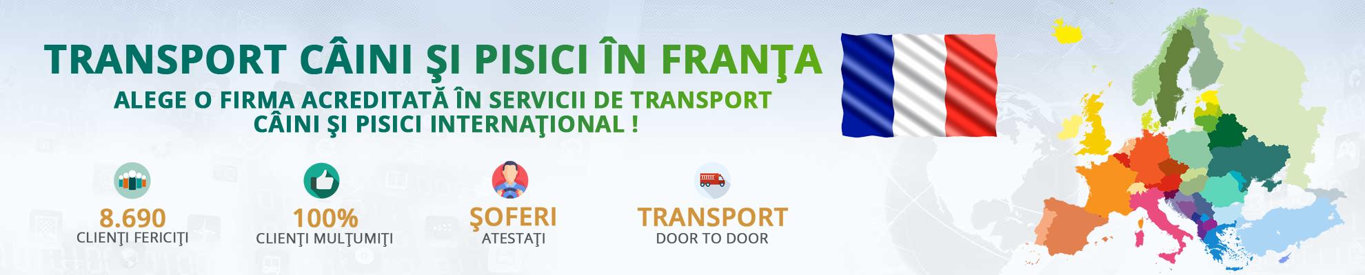 Transport caini si pisici in Franta